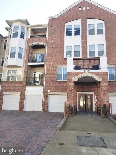 Odenton Condo For Sale: 8609 Wintergreen Court #208