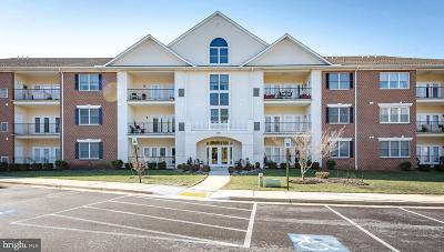 Annapolis Condo For Sale: 805 Coxswain Way #202