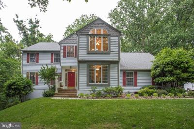 Annapolis Single Family Home For Sale: 1702 Harbor Lane S
