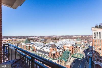 Anne Arundel County Condo For Sale: 1915 Towne Centre Boulevard #1004
