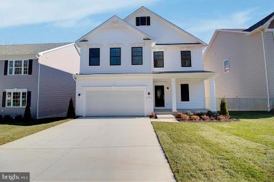 Anne Arundel County Single Family Home For Sale: 1404 Canopy Lane