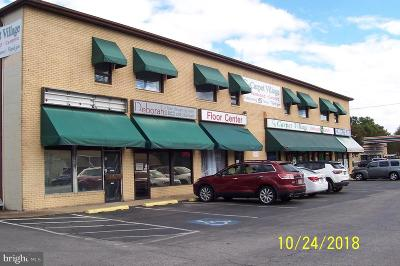 Anne Arundel County, Calvert County, Charles County, Prince Georges County, Saint Marys County Commercial For Sale: 2710 Mountain Road