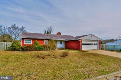 Linthicum Single Family Home For Sale: 303 Sycamore Road