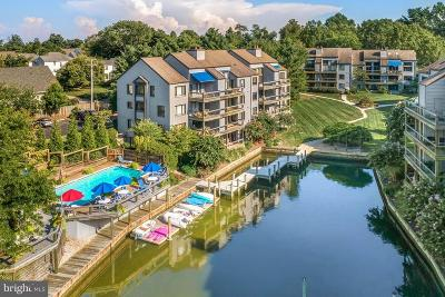 Annapolis Condo For Sale: 6 Spa Creek Landing #A1