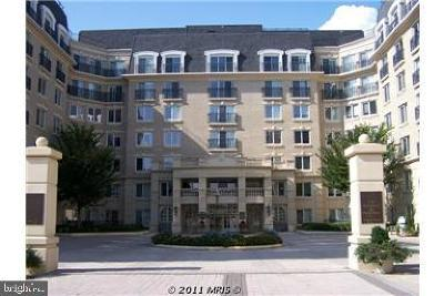 Annapolis Condo For Sale: 5 Park Place #314