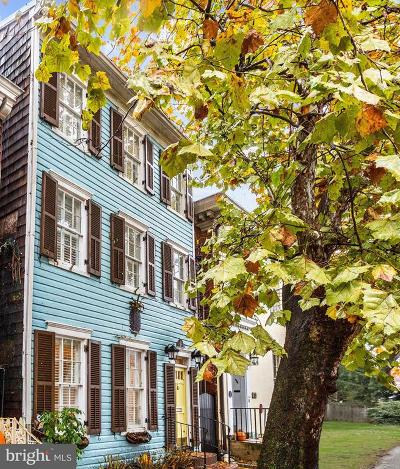 Annapolis Single Family Home For Sale: 146 Prince George Street