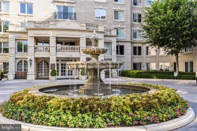 Annapolis Condo For Sale: 5 Park Place #203