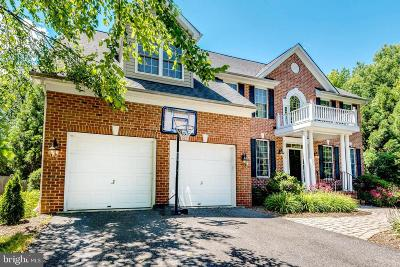 Annapolis Single Family Home For Sale: 602 Candy Court