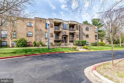 Annapolis Condo For Sale: 8 Silverwood Circle #12