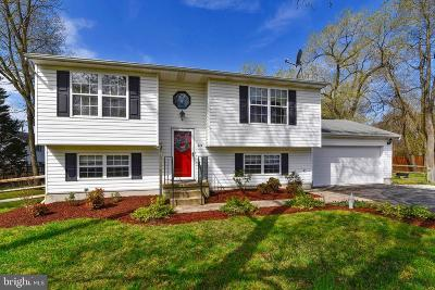 Anne Arundel County Single Family Home For Sale: 278 Peninsula Farm Road