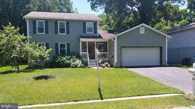 Deale Single Family Home For Sale: 685 Swan Drive