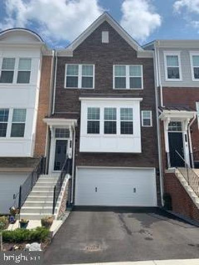 Anne Arundel County, Calvert County, Charles County, Prince Georges County, Saint Marys County Townhouse For Sale: 8119 Dalton Way