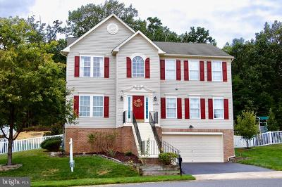 Anne Arundel County Single Family Home For Sale: 1704 Maco Drive