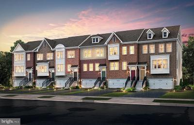 Anne Arundel County, Calvert County, Charles County, Prince Georges County, Saint Marys County Townhouse For Sale: 7724 Cresap Lane