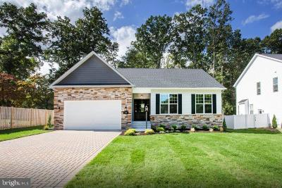 Anne Arundel County Single Family Home For Sale: 8515e Summer Sky Drive
