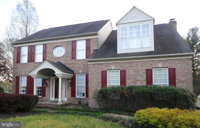 Single Family Home For Sale: 407 Little Marvel Court