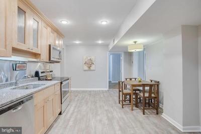 Pasadena Single Family Home For Sale: 105 Maryland Avenue
