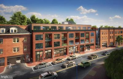 Annapolis Condo For Sale: 141 West Street #201