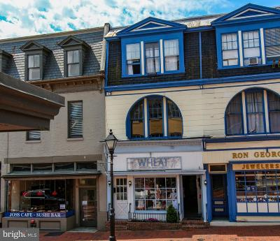 Anne Arundel County, Calvert County, Charles County, Prince Georges County, Saint Marys County Commercial For Sale: 199-201 Main Street