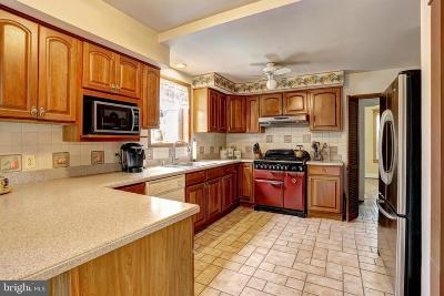 Linthicum Heights Single Family Home For Sale: 424 Cleveland Road