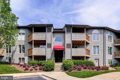Annapolis Condo For Sale: 2116 Chesapeake Harbour Drive #T1
