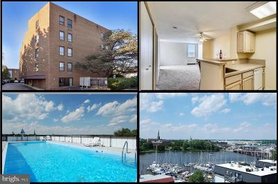 Annapolis Condo For Sale: 316 Burnside Street #505