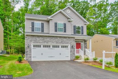 Severna Park Single Family Home For Sale: 810 Baltimore Annapolis Boulevard