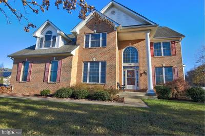 Anne Arundel County Single Family Home For Sale: 401 University Drive