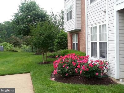 Anne Arundel County Condo For Sale: 705 Orchard Overlook #201