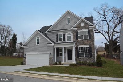Pasadena Single Family Home For Sale: 8162-B Hog Neck Road