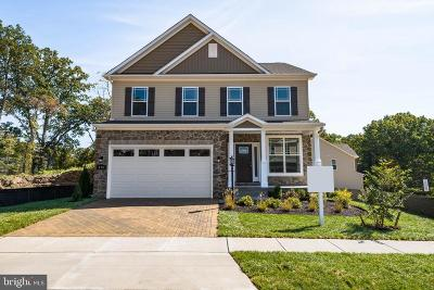 Anne Arundel County Single Family Home For Sale: 7818 Wildflower Drive