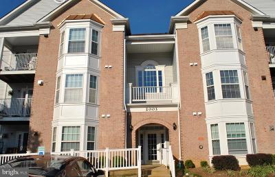 Annapolis Condo For Sale: 2003 Phillips Terrace #9
