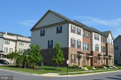 Anne Arundel County Townhouse For Sale: 7739 Duncannon Lane