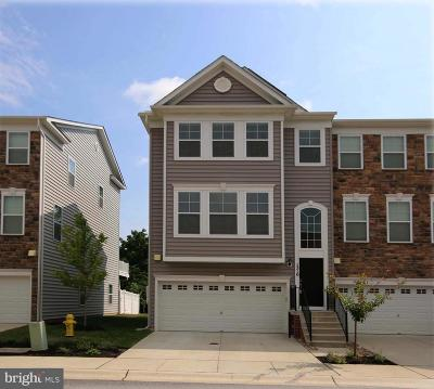 Anne Arundel County Condo For Sale: 1310 Chapel Centre Drive
