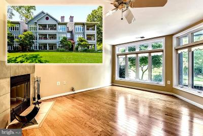 Anne Arundel County Condo For Sale: 1132 Lake Heron Drive #1A