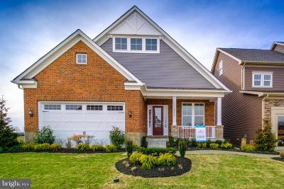 Odenton Single Family Home For Sale: 2896 Broad Wing Drive
