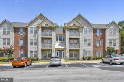 Odenton Condo For Sale: 700 Orchard Overlook #103