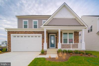 Odenton Single Family Home For Sale: 1128 White Clover Lane