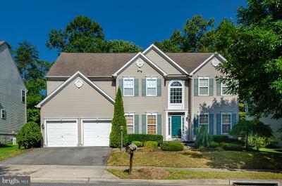 Anne Arundel County Single Family Home For Sale: 8216 Whitebark Lane #8216