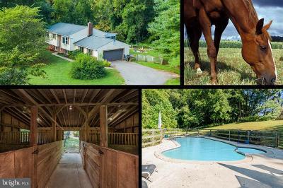 Lothian Single Family Home For Sale: 5208 Cottonwood Drive