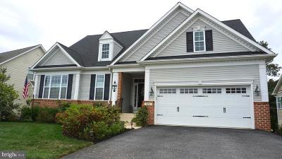 Anne Arundel County Single Family Home For Sale: 523 Donner Way