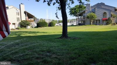 Annapolis Condo For Sale: 7002 Channel Village Court #D