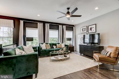 Gambrills Single Family Home Temporarily Off Market: 2607 Day Lily Road
