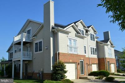 Odenton Condo For Sale: 2068 Astilbe Way
