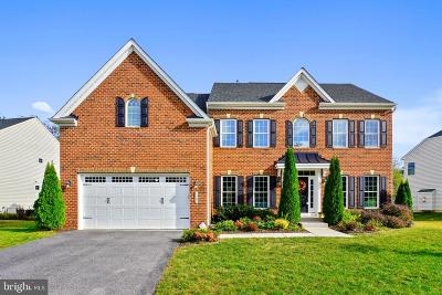 Annapolis Single Family Home For Sale: 1307 Pennington Lane N