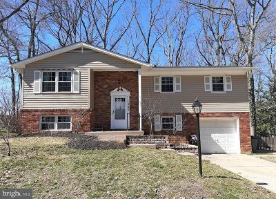 Annapolis Single Family Home For Sale: 1302 Hawkins Lane
