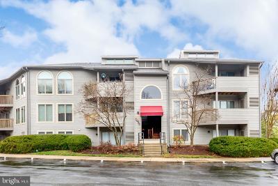 Annapolis Condo For Sale: 7038 Harbour Village Court #102