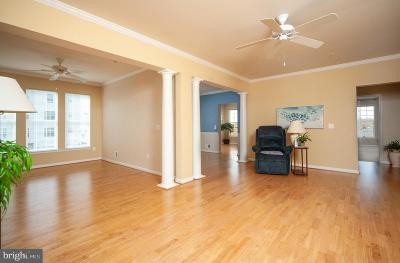 Odenton Condo For Sale: 8603 Wintergreen Court #7-202