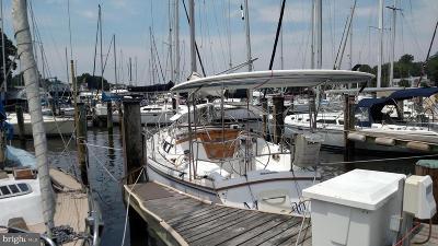 Annapolis Condo For Sale: 300 Burnside Street #26