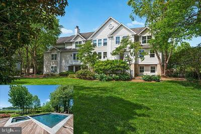 Annapolis Single Family Home Temporarily Off Market: 3416 Hidden River View Road